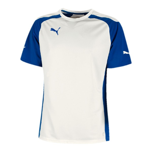 Puma SPEED Handball Trikotsatz