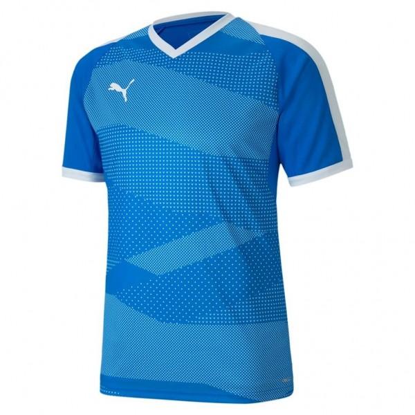 puma-teamFINAL-indoor-trikot-blau